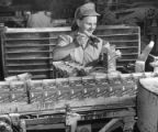 Woman packing brown sugar at the Workers at the National Sugar Refinery Co.