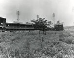 Overgrown interior of deserted Connie Mack Stadium