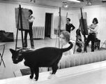 JJ, the cat, strolls through an early morning life drawing class