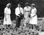 Ambler Campus harvest fair committee viewing plants, Fall 1967