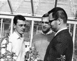 George Manaker and students checking flowers grown for the Philadelphia Flower Show in 1966