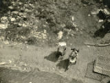 Aerial view of woman holding baby